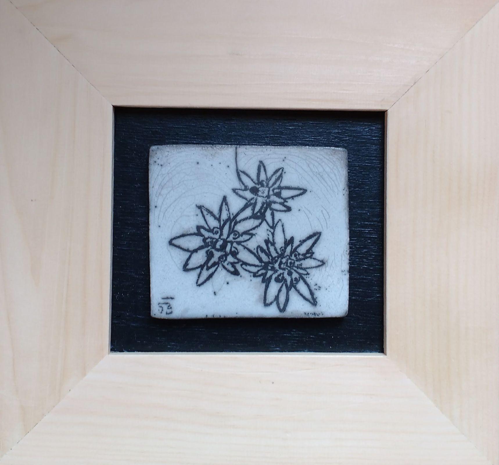 Trois edelweiss